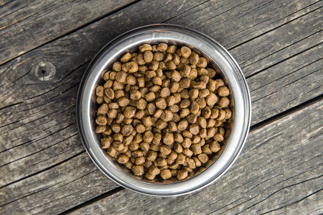 Dried food for animals